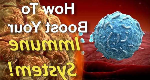 how to strengthen immune system