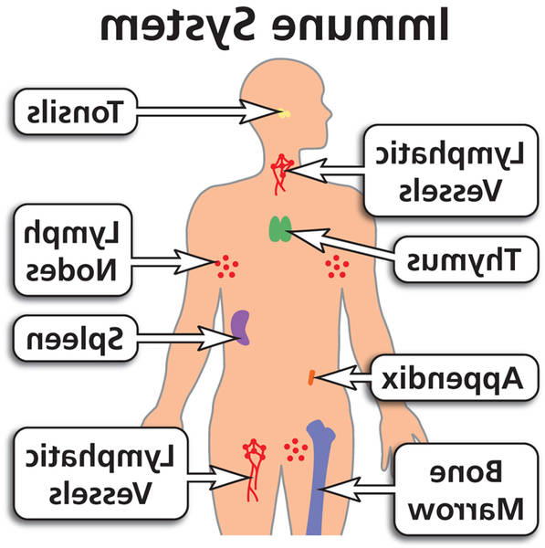 diseases of the immune system