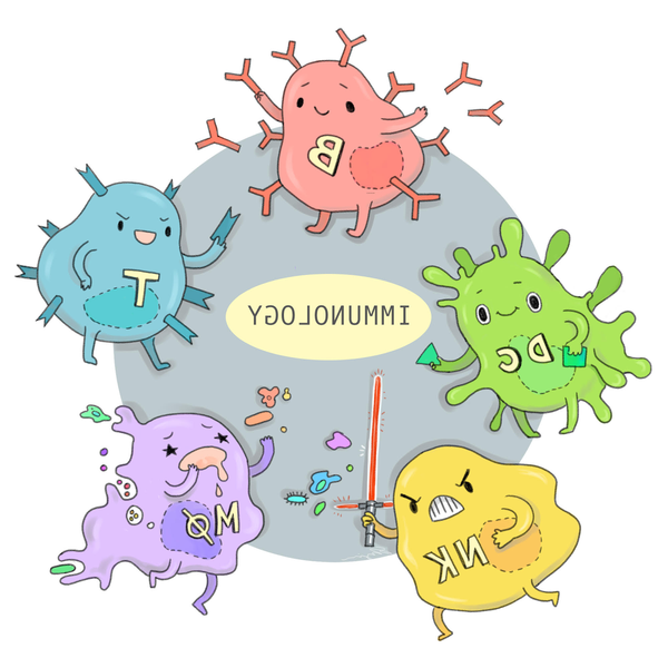 how to make immune system strong