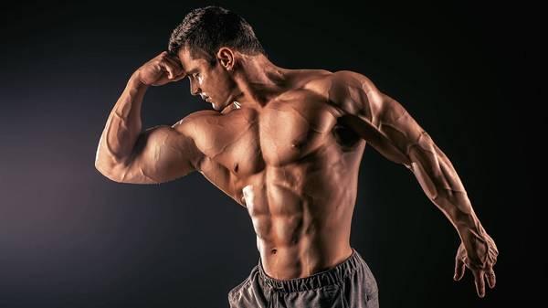 dieta para ganar masa muscular ectomorfo