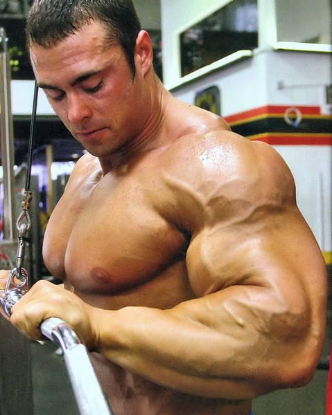 ganar masa muscular y perder grasa