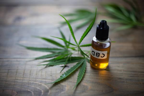 olio di foglie di cannabis